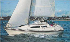 regatta260