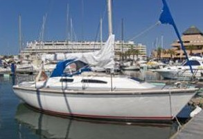 regatta310