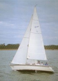 regatta330